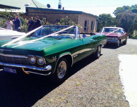 Impressive Impalas of Adelaide