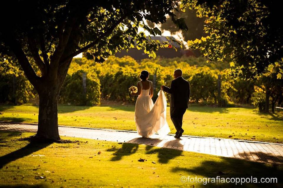 Sandalford_Wines weddings