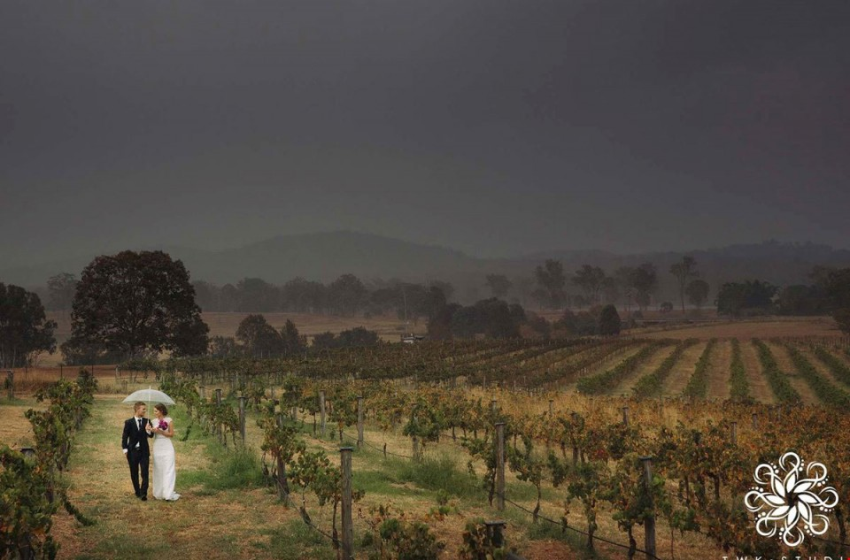 Albert_River_Wines weddings