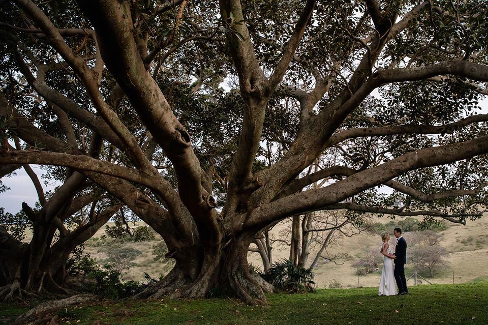 Bushbank weddings