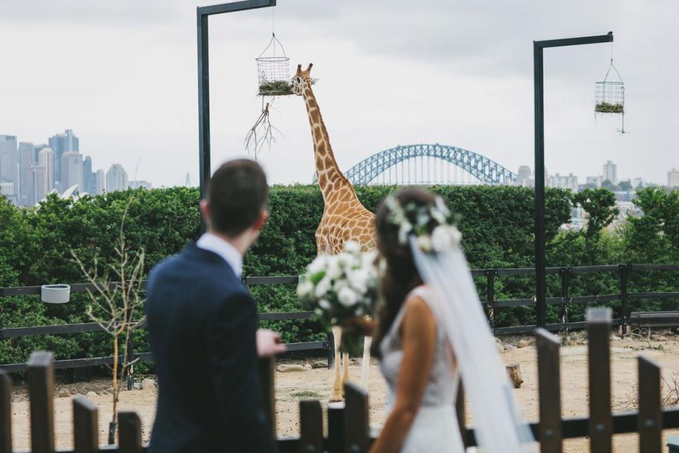 Taronga_Centre weddings